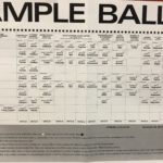 Picture of sample ballot